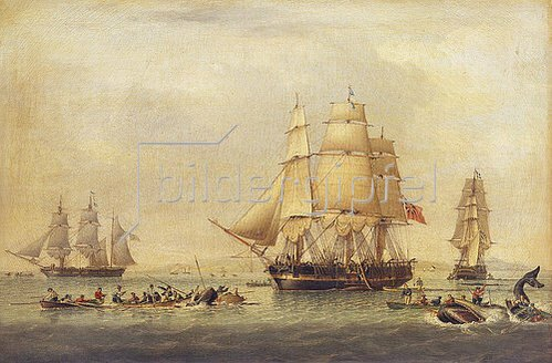 John Ward of Hull: Walfänger in der Südsee.