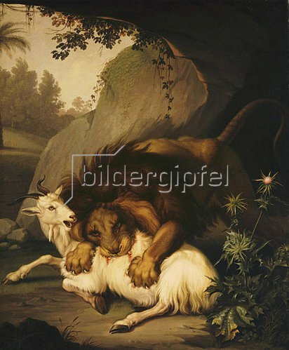 Wenceslaus (Wenzel) Peter: Ein Löwe greift eine Ziege an. 1785