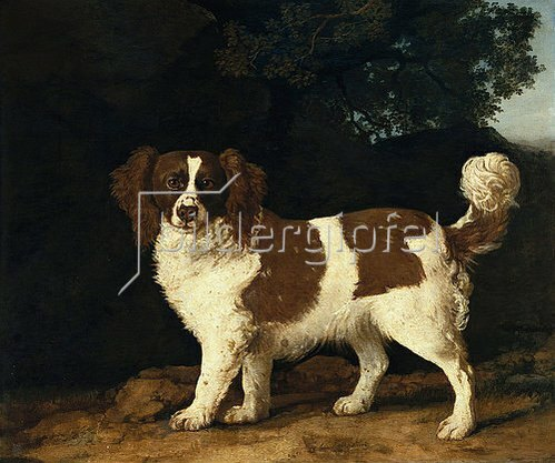 George Stubbs: Fanny, der Lieblings-Spaniel von Mrs. Musters. 1777