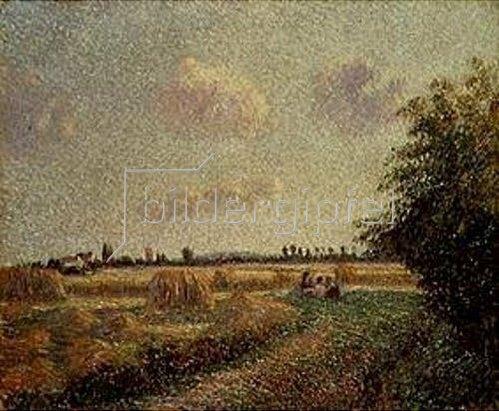 Camille Pissarro: Getreideernte.