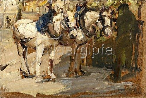 Rudolf Levy: Zwei Schimmel. Um 1900-10