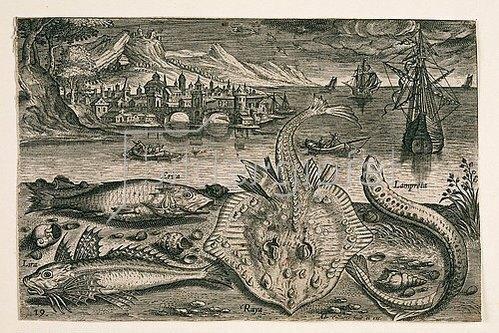 Adriaen Collaert: Landschaft mit Meerestieren, 19 (nummeriert unten links). Um 1580