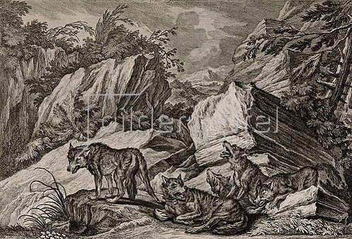 Johann Elias Ridinger: Wolfsrudel mit Jungen.