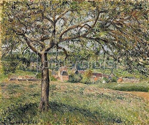 Camille Pissarro: Apfelbaum in Ergany (Pommier à Eragny). 1884