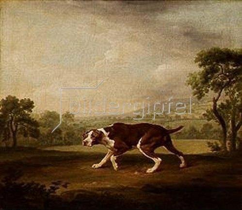 George Stubbs: Hühnerhund. 1760/1768.
