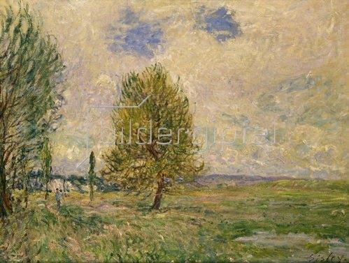 Alfred Sisley: Felder bei Veneux-Nadon. 1881