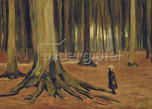 Vincent van Gogh: Ein Mädchen im Wald. 1882.