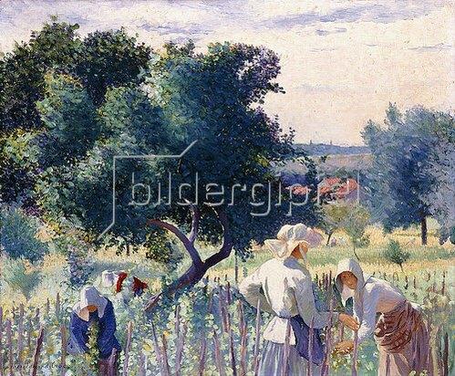 Henri Edmond Cross: Frauen biem Binden der Weinreben. 1890