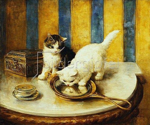 Marie Yvonne Laur: Eine Katze betrachtet sich im Spiegel (Feline Reflections).