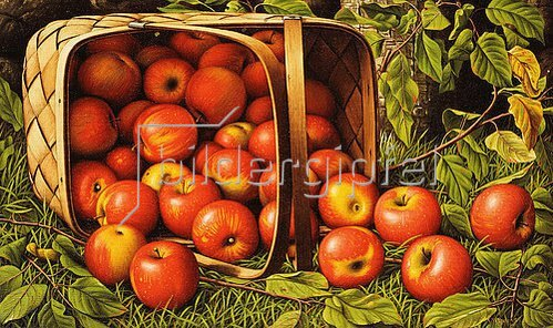 Levi Wells Prentice: Ein Korb mit Äpfeln.