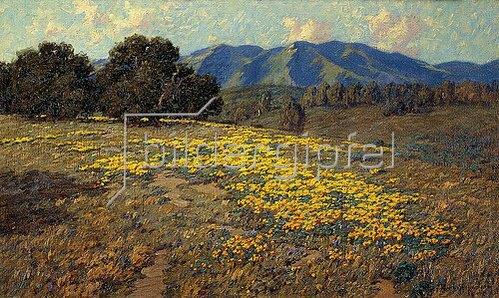 Granville Redmond: Kalifornischer Mohn (California Poppies).