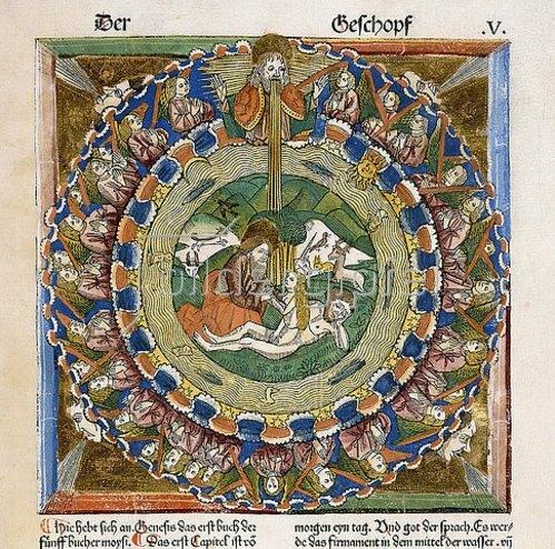 Deutsch: Die Erschaffung Evas. Aus einer deutschen Bibel, dem Meister der Kölner Bibeln zugeschrieben. Herausgegen von Anton Koberger, Nürnberg 1483
