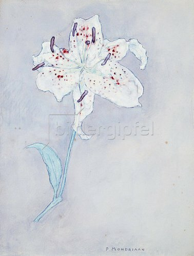 Piet Mondrian: Lilie. Um 1920-25