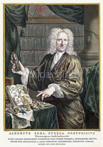 Jacobus Houbraken: Porträt von Albertus Seba, Herausgeber von 'Locupletissimi Rerum Naturalium Thesauri Accurata Descriptio [...]'. Amsterdam, 1734-65