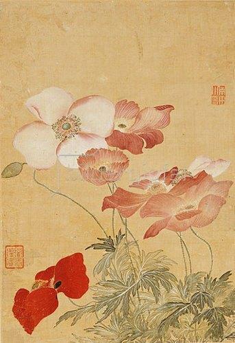 Yun Shouping: Mohnblumen (Blatt aus einem Album mit Blumendarstellungen).