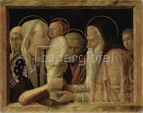 Andrea Mantegna: Darstellung Christi im Tempel. Um 1465/66.