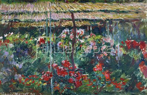Claude Monet: Pfingstrosengarten 1887