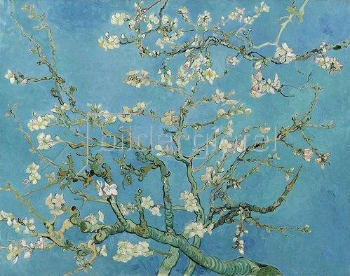 Vincent van Gogh: Mandelblüte, 1890