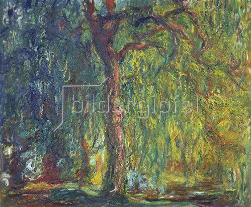 Claude Monet: Die Trauerweide 1918/19