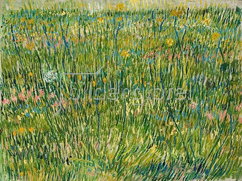 Vincent van Gogh: Rasenstück 1887
