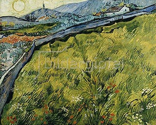 Vincent van Gogh: Saatfeld bei Sonnenaufgang. 1890.