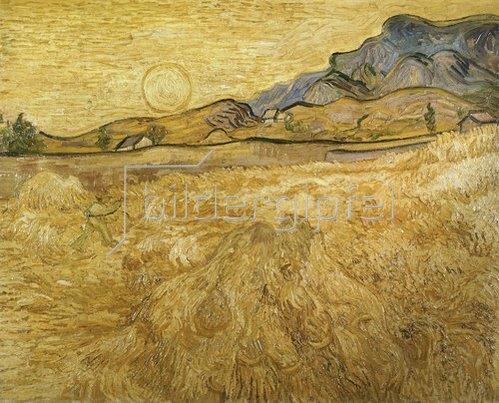 Vincent van Gogh: Umfriedetes Weizenfeld mit Schnitter. 1889.