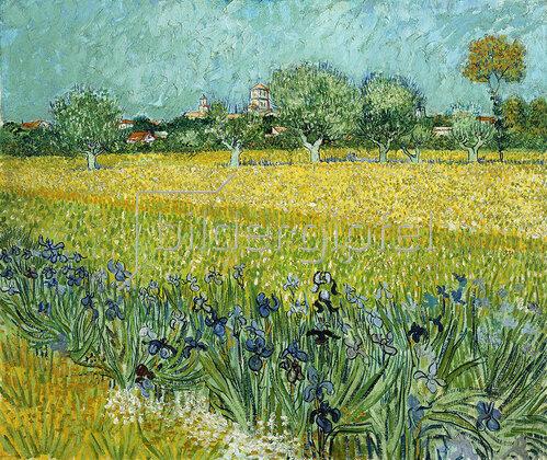 Vincent van Gogh: Feld mit Schwertlilien