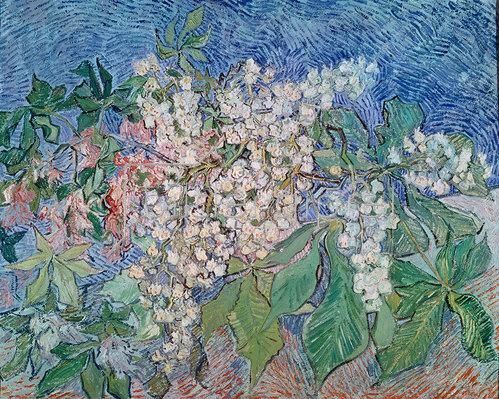 Vincent van Gogh: Blühende Kastanienzweige 1890