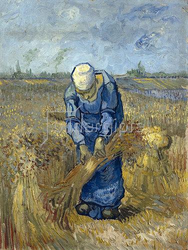 Vincent van Gogh: Garbenbindende Bäuerin