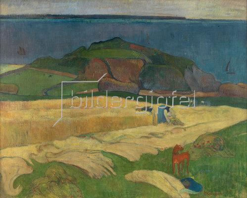 Paul Gauguin: Ernte (Le Pouldu). 1890