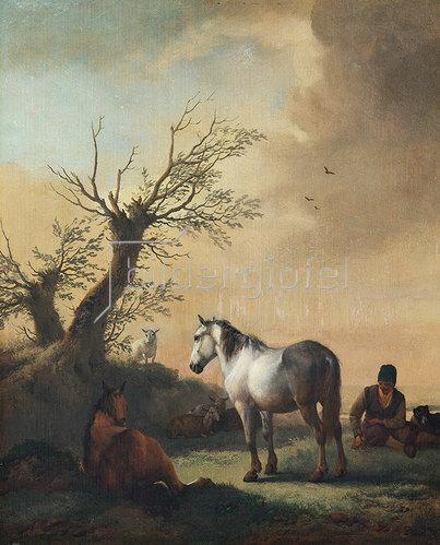 Philips Wouwerman: Pferde und Schafe auf einer Weide