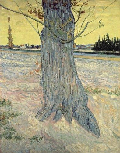Vincent van Gogh: Der Baum. Arles, September 1888