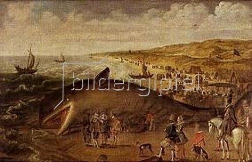 Esaias van de Velde: Ein Wal, 1617 zwischen Scheveningen und Katwijk gestrandet.