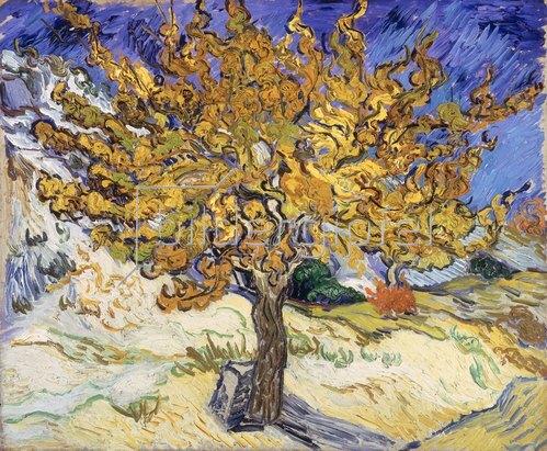 Vincent van Gogh: Maulbeerenbaum