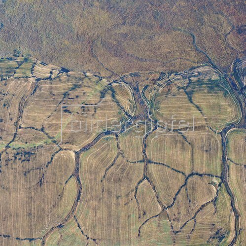 Günter Kozeny: Luftaufnahme, Im Moor