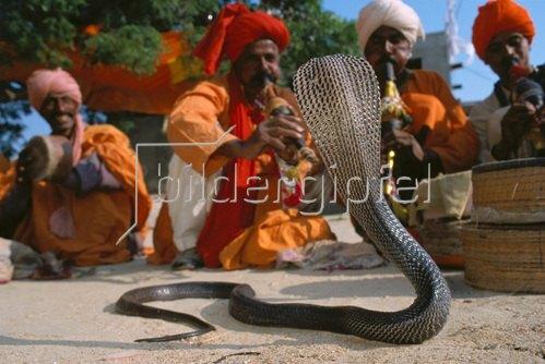 Horst A. Friedrichs: Schlangenbeschwörer Pakistan