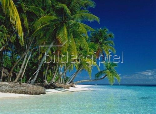 Urlaubsparadies, Küste und Strand