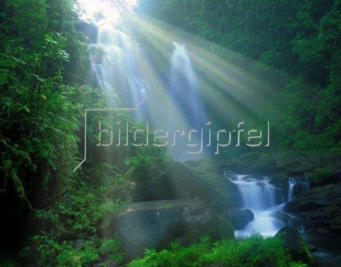Wasserfall im Braulio Carrillo Nationalpark, Costa Rica