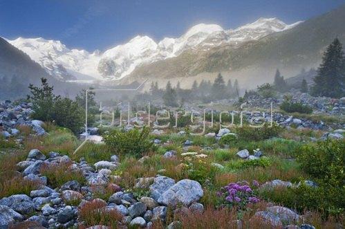 Blick vom Val Morteratsch auf den Piz Bernina und den Piz Argient bei St. Moritz, Oberengadin, Kanton Graubünden, Schweiz
