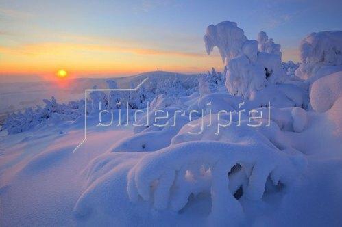 Wintermorgen auf dem Fichtelberg bei Oberwiesenthal, Erzgebirge, Sachsen, Deutschland