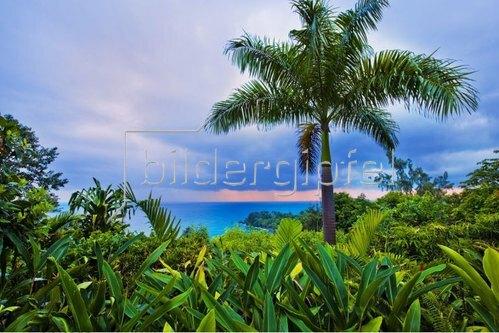 Küstenlandschaft bei Port Antonio, Portland, Jamaica