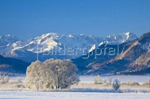 Murnauer Moos bei Murnau mit Wettersteingebirge, Oberbayern.