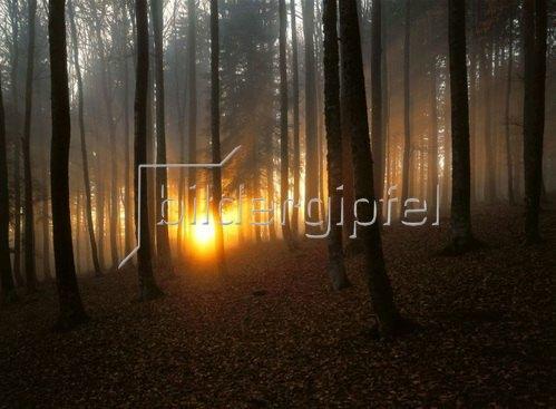 Sonnenuntergang im Schwarzwald, Deutschland