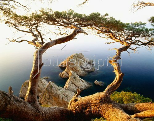 Blick auf die Küstenlandschaft bei Tossa de Mar, Costa Brava, Gerona, Spanien