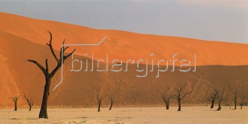 Dünen von Sossusvlei, Namib, Naukluft Park Namib Wüste, Namibia