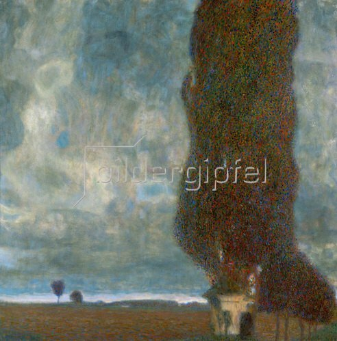 Die grosse Pappel oder Aufsteigendes Gewitter 1903, 100 x 100 cm