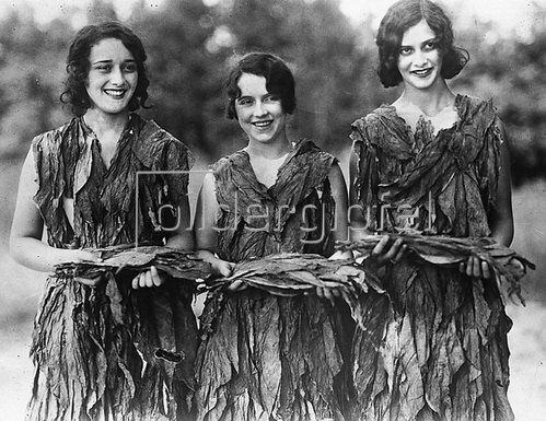 Drei Junge Frauen  aus Halifax in Virginia....