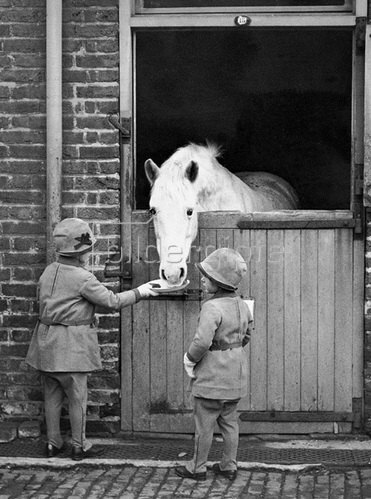 Kinder füttern Pferd. Photographie, um 1930. London.