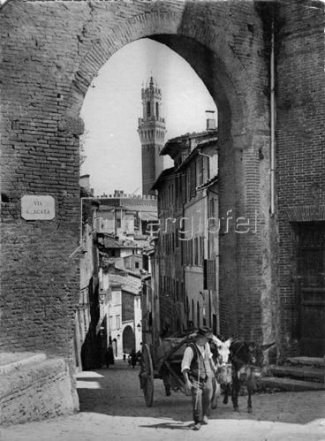 Stadtansicht Siena. Photographie. Um 1930