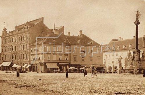 Stadtansicht von Wiener Neustadt. Niederösterreich. Österreich. Photographie. 1893.
